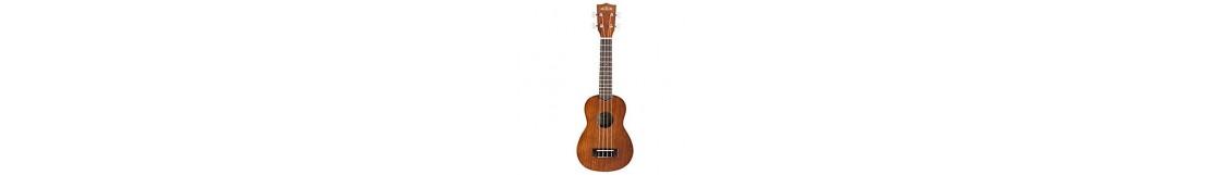 instrumentos-cuerda-ukeleles-banjos-mandolinas